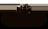 Logo du Domaine de Hunolstein